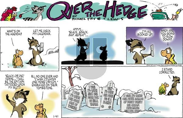 Over the Hedge on Sunday January 31, 2021 Comic Strip