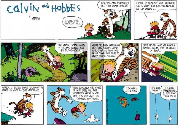 Calvin and Hobbes - Sunday April 17, 1988 Comic Strip