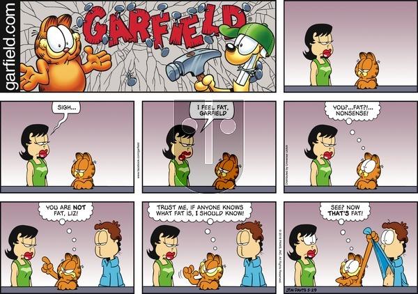 Garfield on Sunday May 29, 2016 Comic Strip