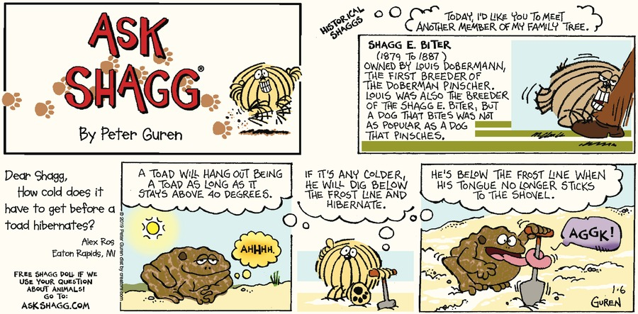 Ask Shagg Comic Strip for January 06, 2019