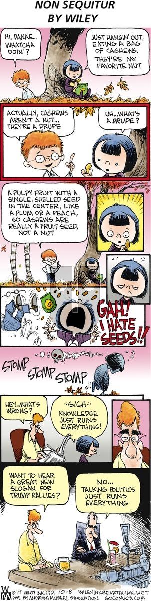 Non Sequitur on Sunday October 8, 2017 Comic Strip