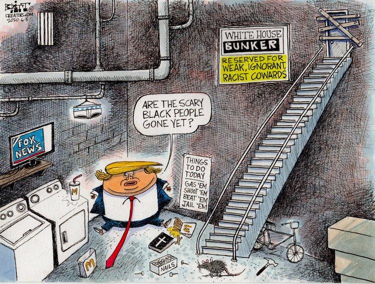 Chris Britt Comic Strip for June 05, 2020