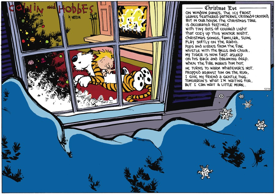 Calvin and Hobbes Comic Strip for December 24, 1989