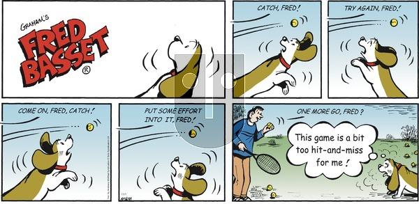 Fred Basset on Sunday November 1, 2020 Comic Strip