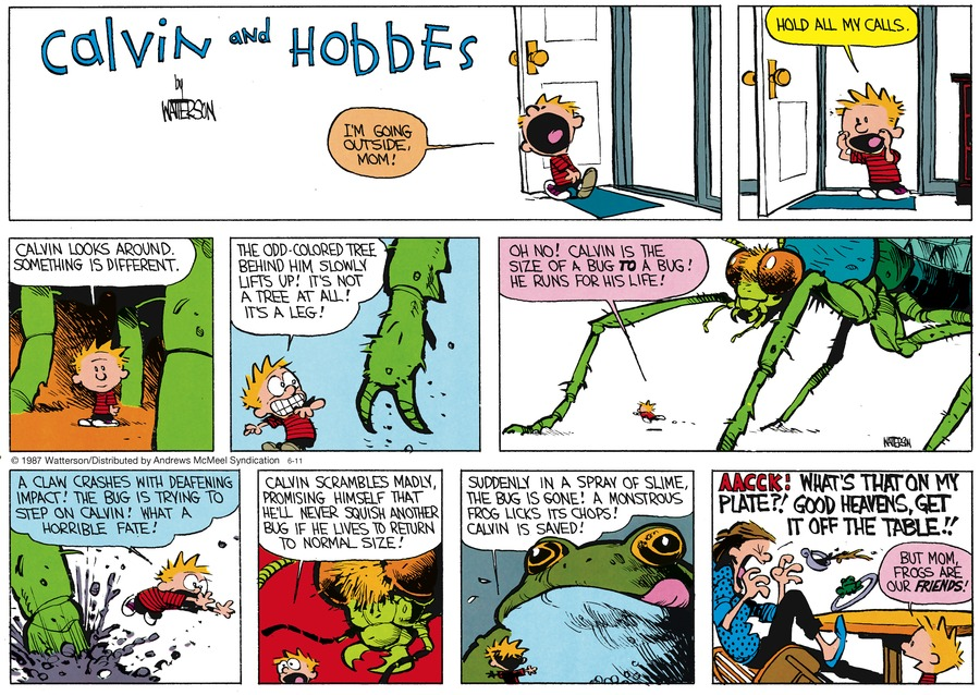 Calvin and Hobbes Comic Strip for June 11, 2017