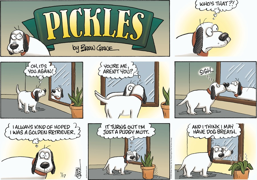 Pickles Comic Strip for January 17, 2021