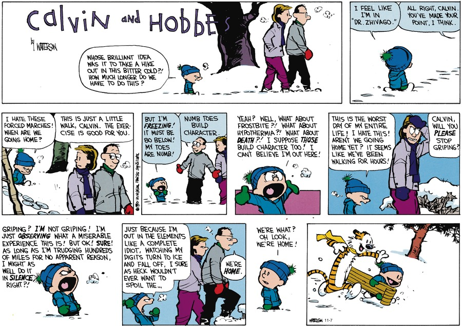 Calvin and Hobbes Comic Strip for January 21, 1990