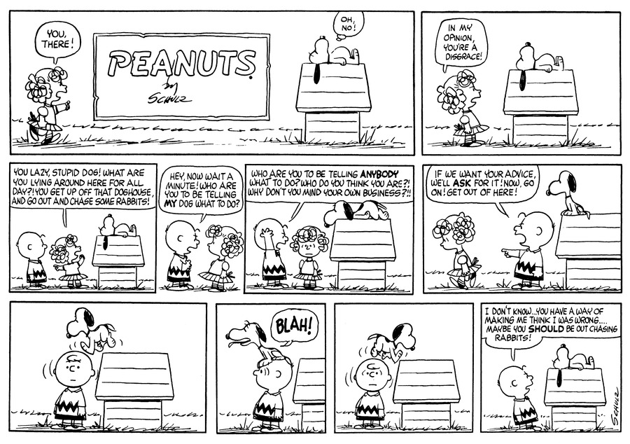 Peanuts Comic Strip for May 14, 1961