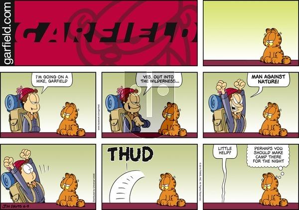 Garfield on Sunday June 5, 2016 Comic Strip