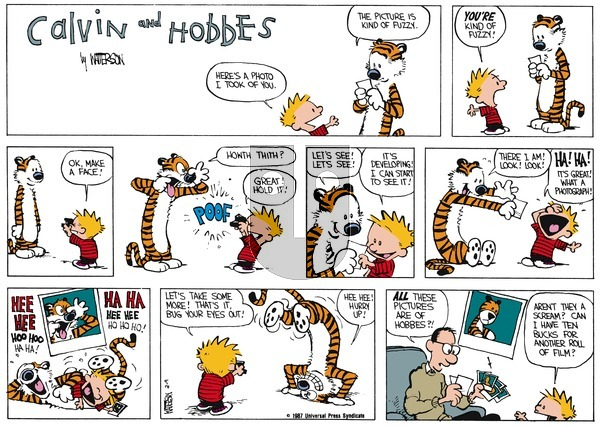 Calvin and Hobbes on Sunday March 15, 1987 Comic Strip