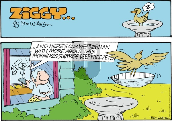 Ziggy - Sunday November 3, 2019 Comic Strip