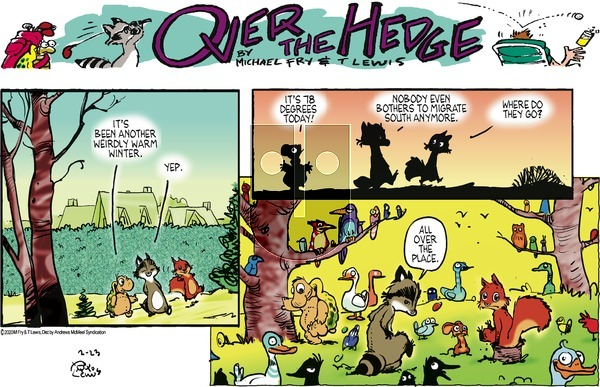 Over the Hedge on Sunday February 23, 2020 Comic Strip