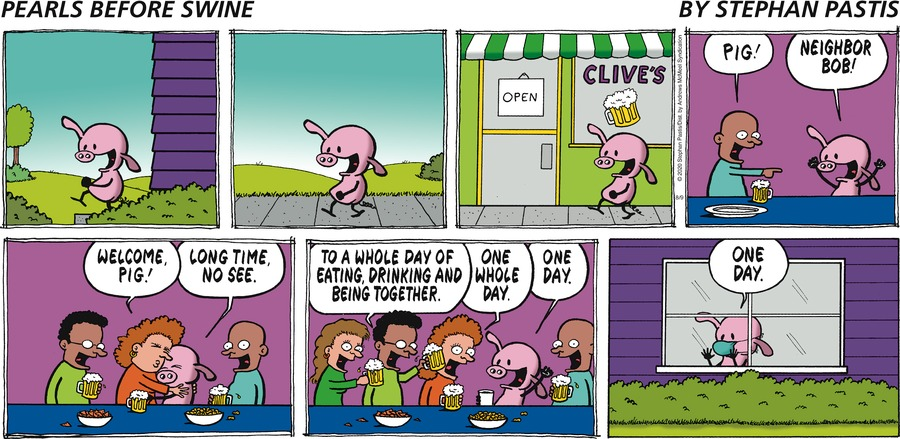 Pearls Before Swine Comic Strip for August 09, 2020