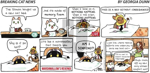 Breaking Cat News on Sunday July 1, 2018 Comic Strip
