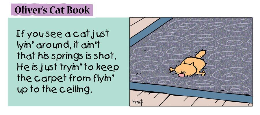 Ten Cats Comic Strip for July 22, 2021