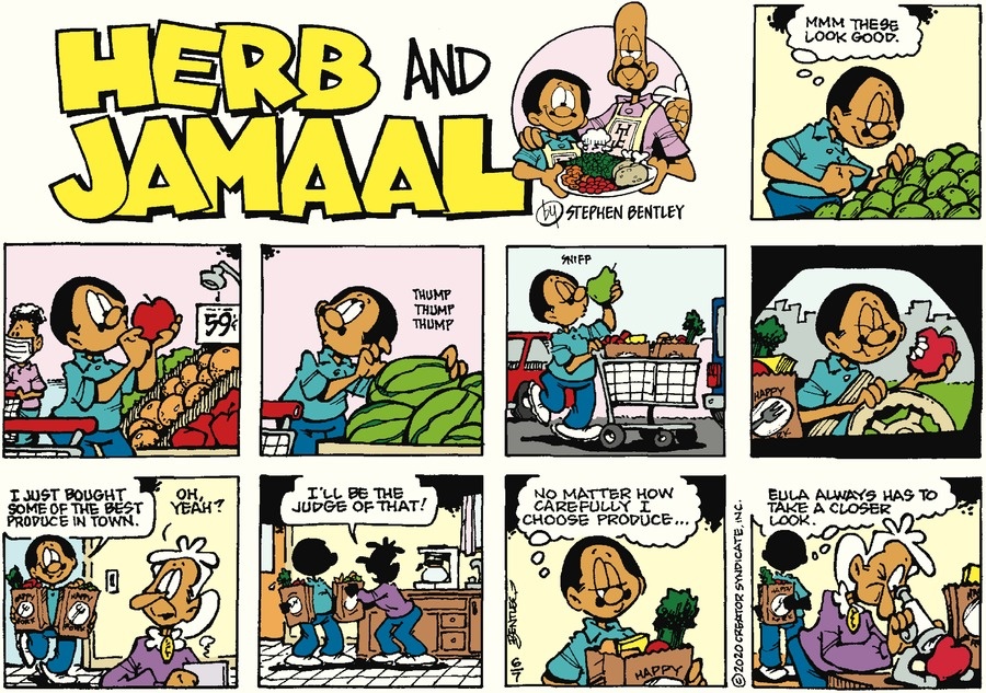 Herb and Jamaal Comic Strip for June 07, 2020