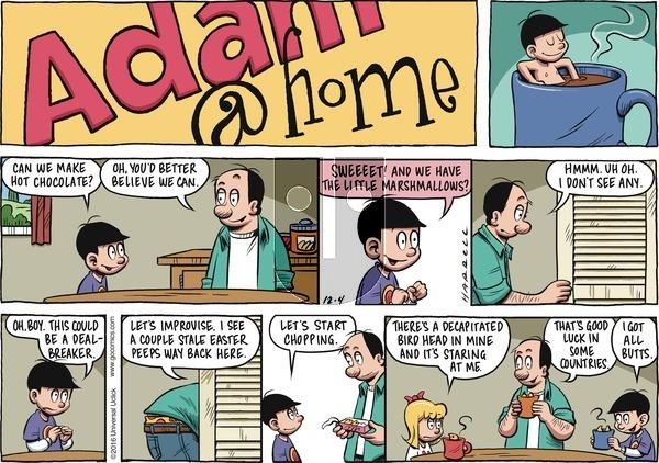 Adam@Home on Sunday December 4, 2016 Comic Strip