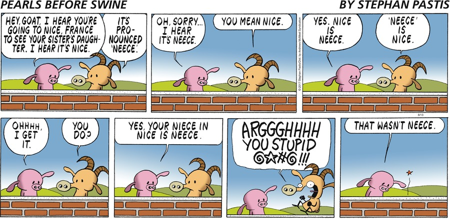 Pearls Before Swine for Aug 13, 2017 Comic Strip