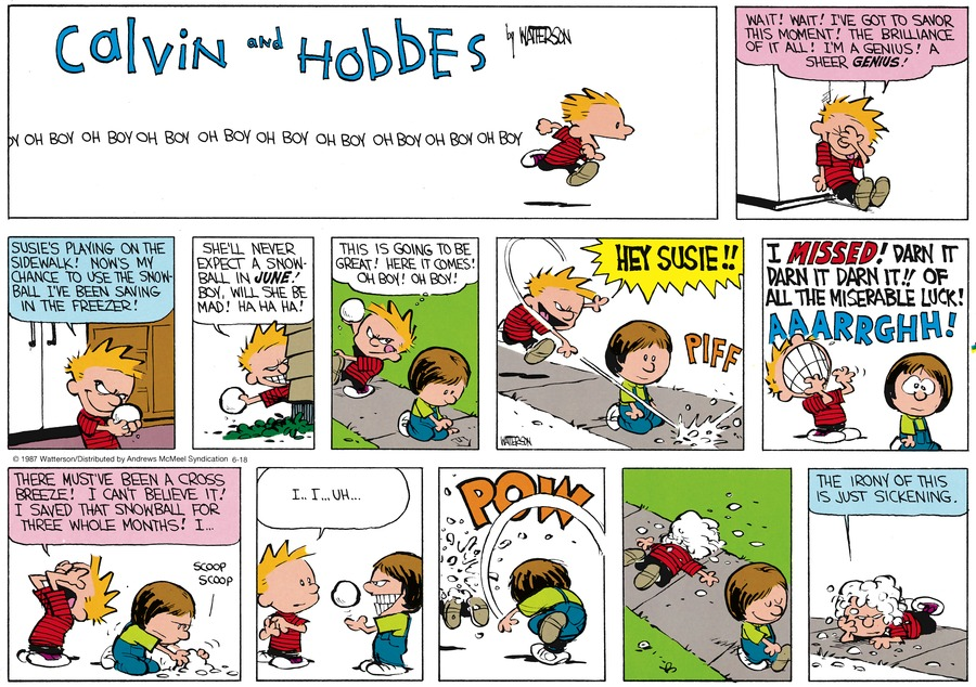 Calvin and Hobbes for Jun 18, 2017 Comic Strip