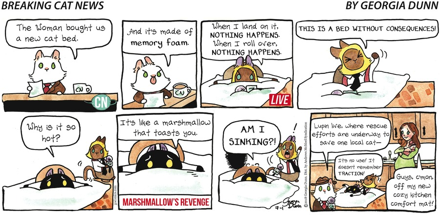 Breaking Cat News for Jul 1, 2018 Comic Strip