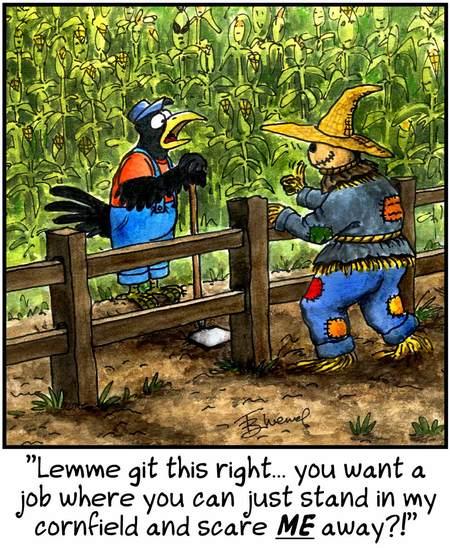 Birdbrains for May 18, 2013 Comic Strip