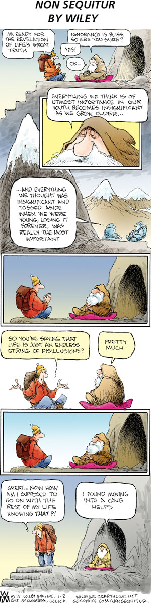 Non Sequitur Comic Strip for January 02, 2011