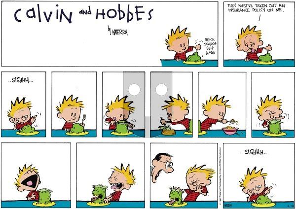 Calvin and Hobbes - Sunday April 18, 2021 Comic Strip
