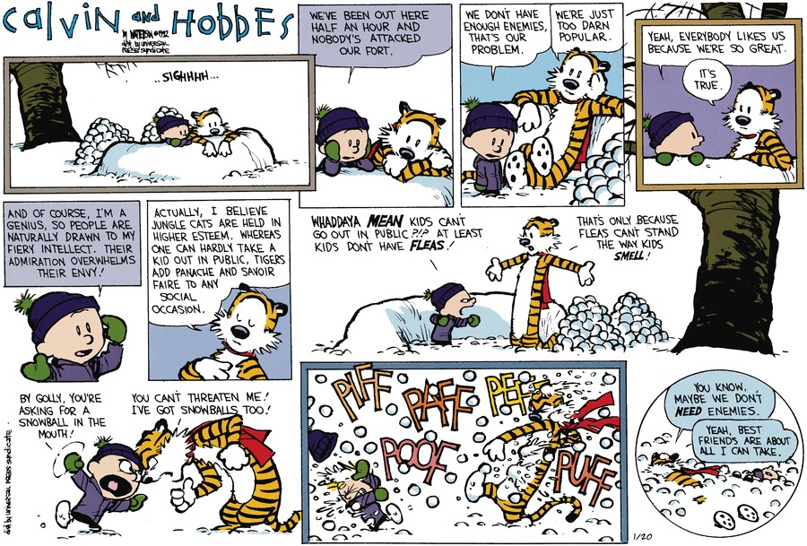 Calvin and Hobbes Comic Strip for January 20, 2013