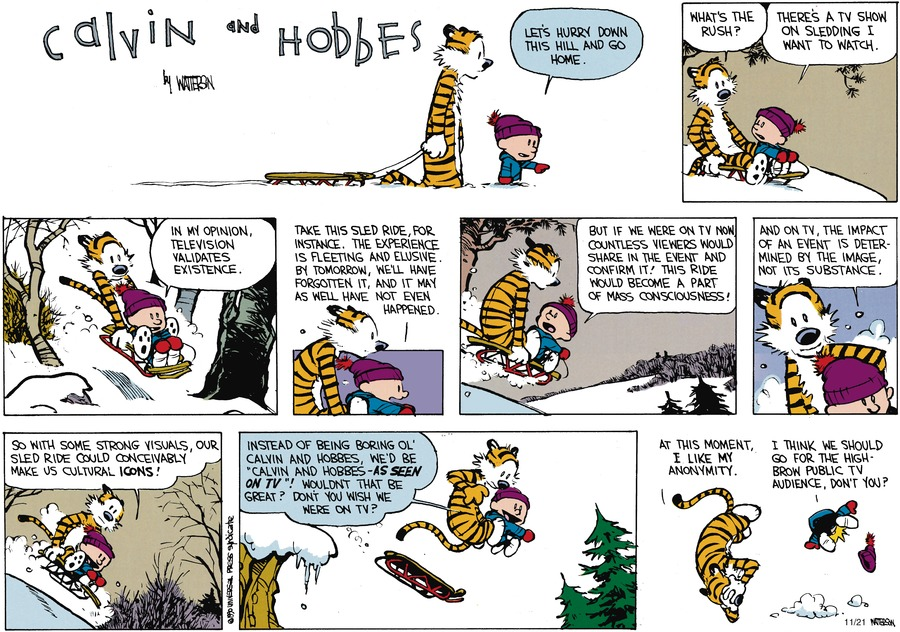 Calvin and Hobbes Comic Strip for February 04, 1990