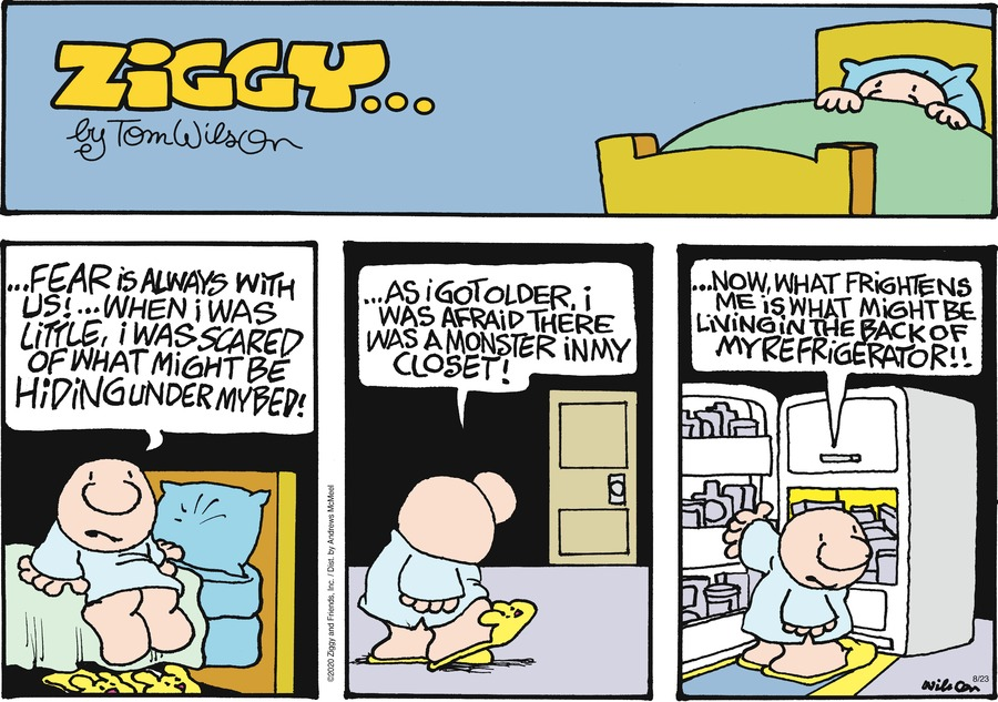 Ziggy Comic Strip for August 23, 2020