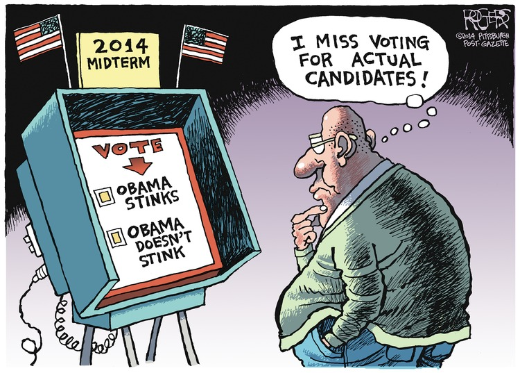 "A man looks at his 2014 midterm election ballot. His choices are ""Obama stinks"" and ""Obama doesn't stink."" Man: I miss voting for actual candidates!"