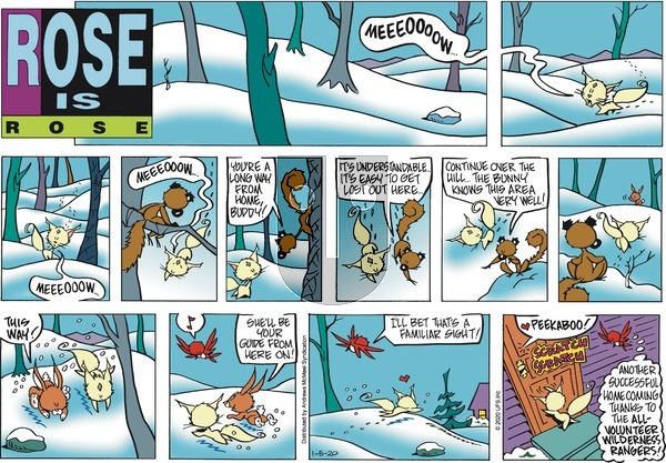 Rose is Rose on Sunday January 5, 2020 Comic Strip
