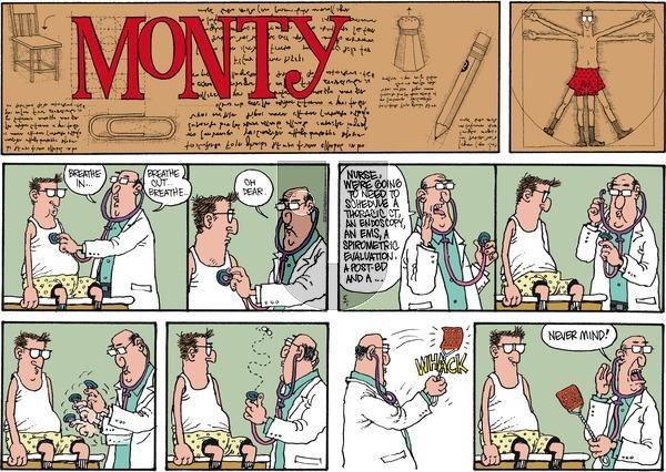 Monty on Sunday May 1, 2016 Comic Strip