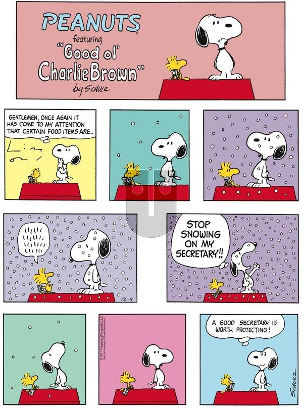 Peanuts on December 9, 2018 Comic Strip