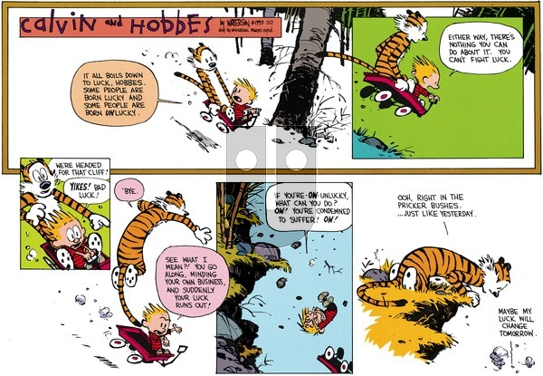 Calvin and Hobbes on Sunday April 18, 1993 Comic Strip