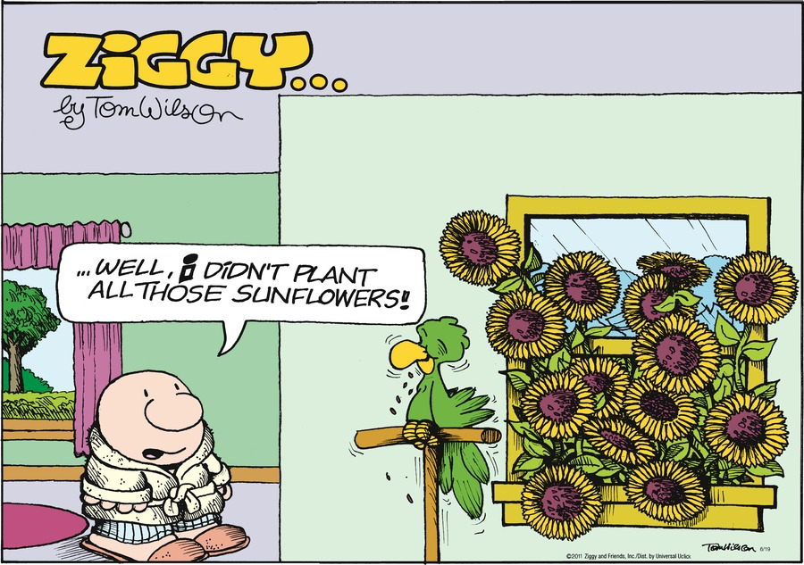Ziggy Comic Strip for June 19, 2011