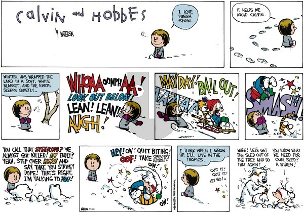 Calvin and Hobbes on Sunday February 11, 1990 Comic Strip