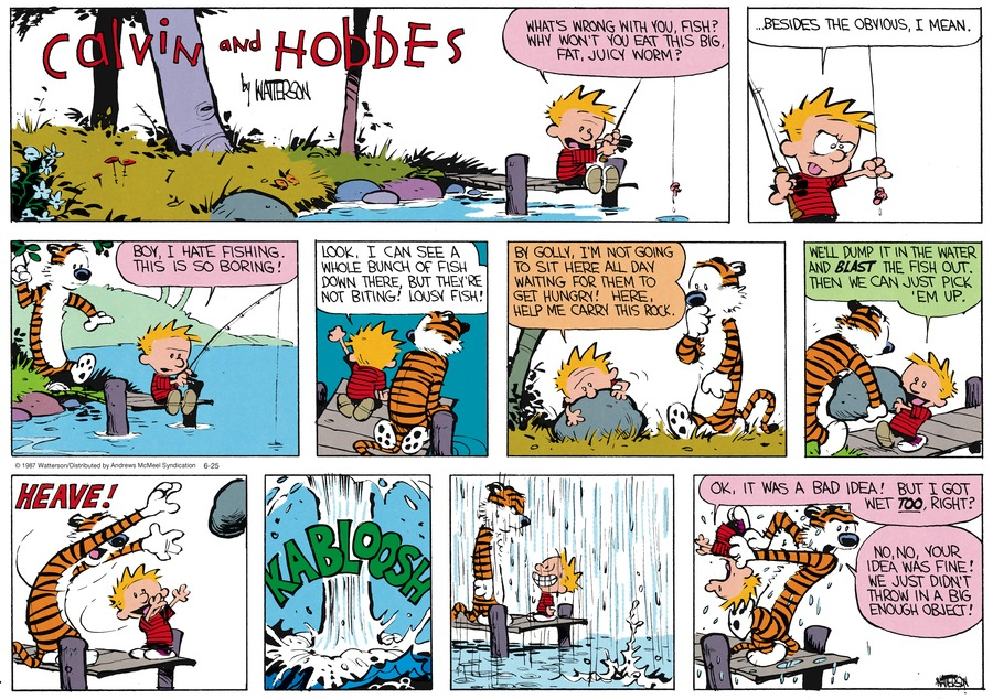 Calvin and Hobbes Comic Strip for June 25, 2017