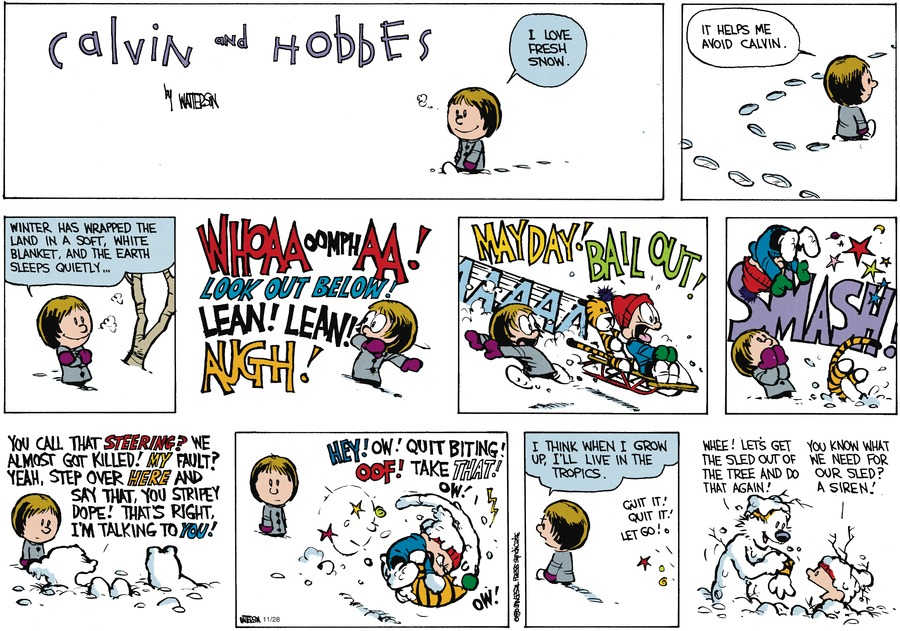 Calvin and Hobbes Comic Strip for February 11, 1990