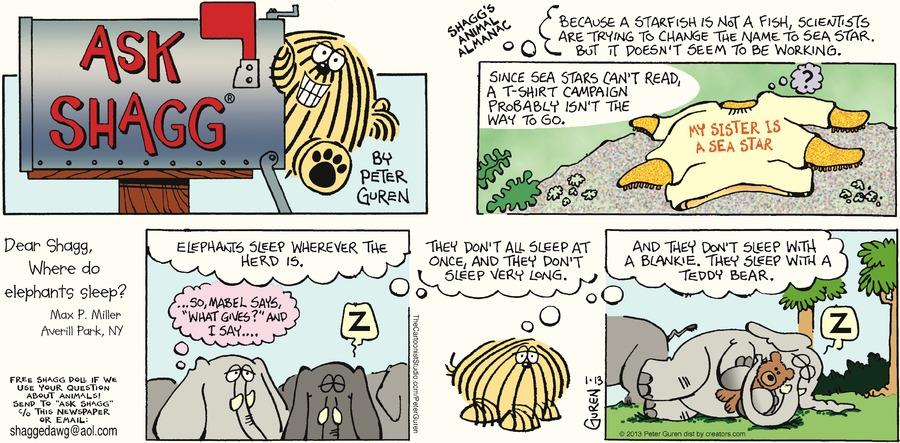 Ask Shagg for Jan 13, 2013 Comic Strip