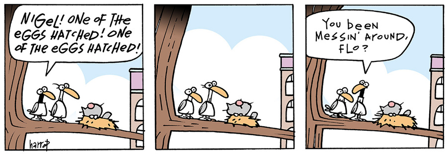 Ten Cats for May 14, 2013 Comic Strip