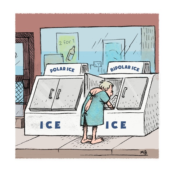 Polar Ice Machine