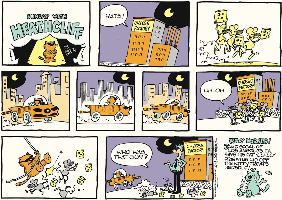 Heathcliff Comic Strip for June 08, 2014