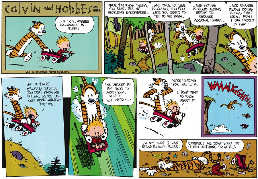 Calvin: It's true, Hobbes, ignorance is bliss. Once you know things, you start seeing problems everywhere...and once you see problems, you feel like you ought to try to fix them..and fixing problems always seems to require personal change.  And change means doing things that aren't fun! I say phooey to that! But if you're willfully stupid, you don't know any better, so you can keep doing whatever you like!  The secret to happiness is short-term, stupid self-interest!  Hobbes: We're heading for that cliff!  Calvin: I don't want to know about it.  Waaaaaugghhhhh!  Hobbes: I'm not sure I can stand so much bliss.  Calvin: Careful!   We don't want to learn anything from this.