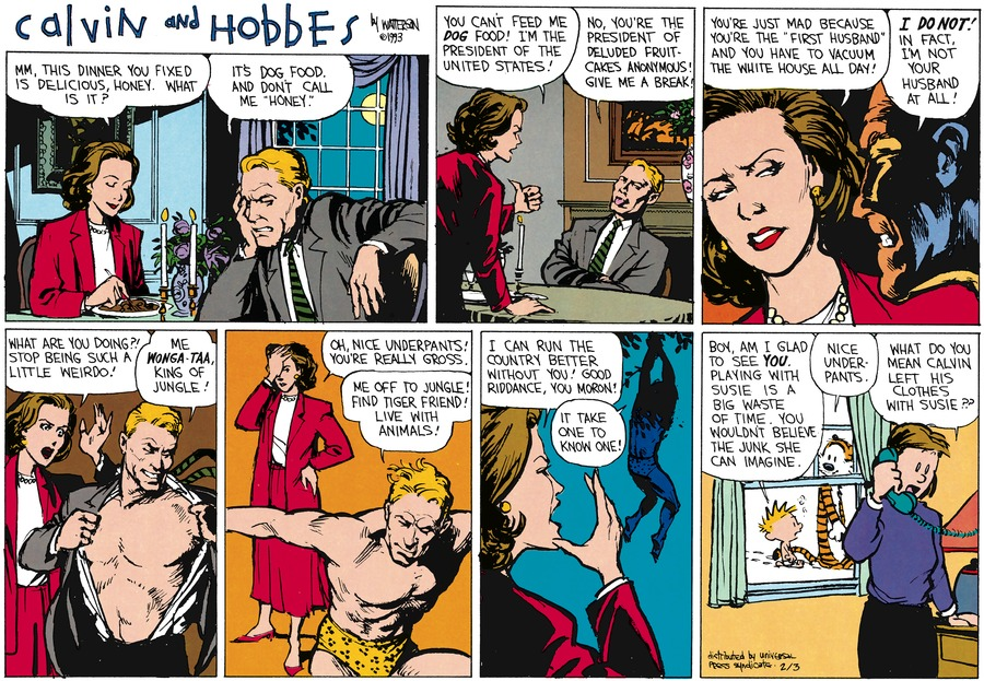Calvin and Hobbes Comic Strip for February 03, 2013