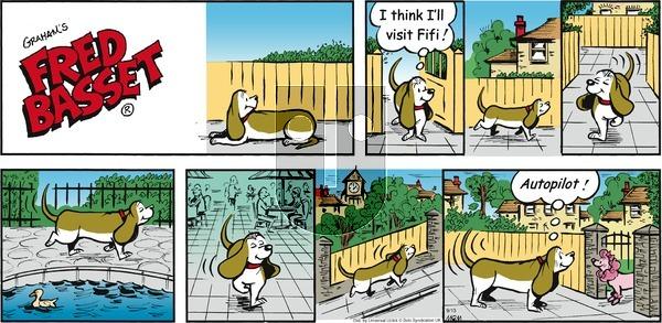 Fred Basset on Sunday September 13, 2015 Comic Strip