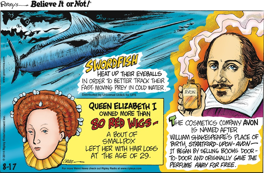 Ripley's Believe It or Not for Aug 17, 2014 Comic Strip