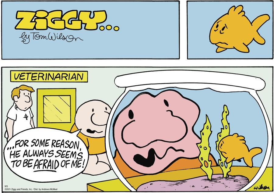 Ziggy Comic Strip for September 05, 2021