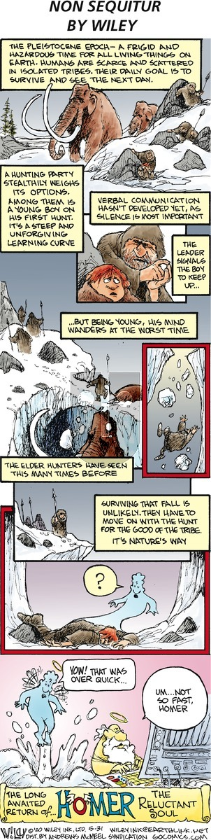 Non Sequitur - Sunday May 31, 2020 Comic Strip