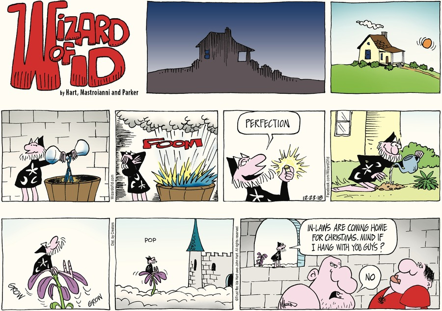 Wizard of Id Comic Strip for December 23, 2018